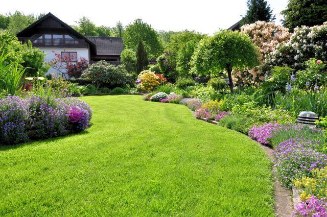 Estate Landscape Pics 2